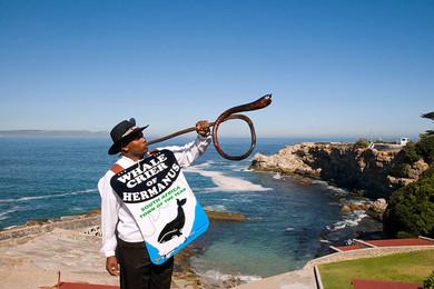 siti di incontri Sud Africa Western Cape